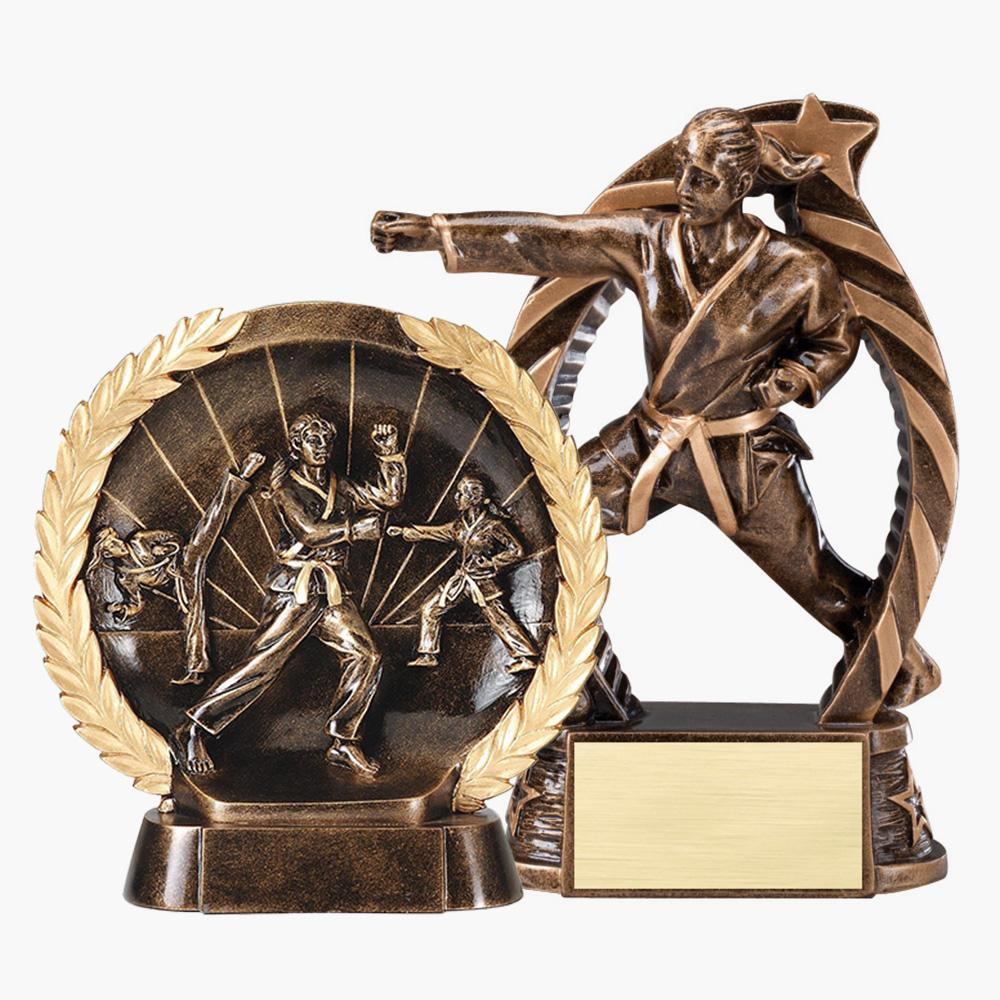 Martial Arts Trophies